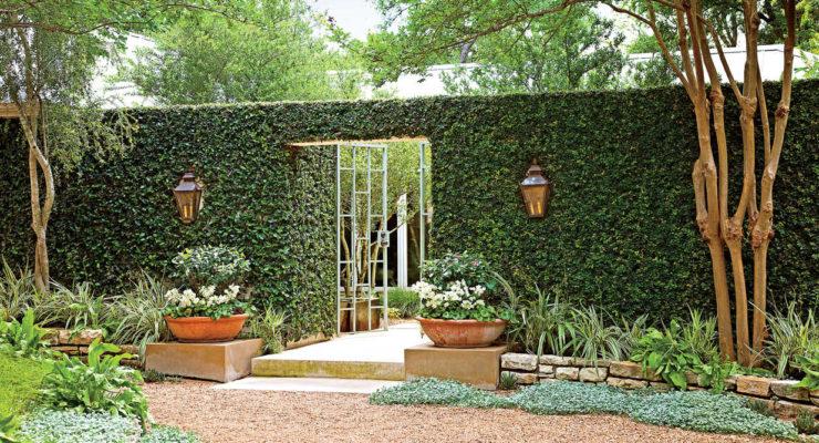 Construct A Perfect Heat Tolerant Lawn
