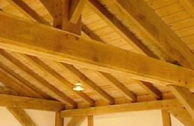 Difference Between Wood Rot And Wet Rot