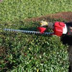 How Can Wet-Hedges Be Carefully Cut With Gas Hedge Trimmer